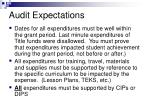 audit expectations11