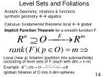 level sets and foliations