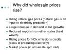 why did wholesale prices rise