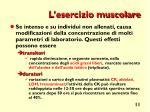 l esercizio muscolare
