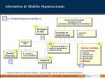 alternativas de modelos organizacionais