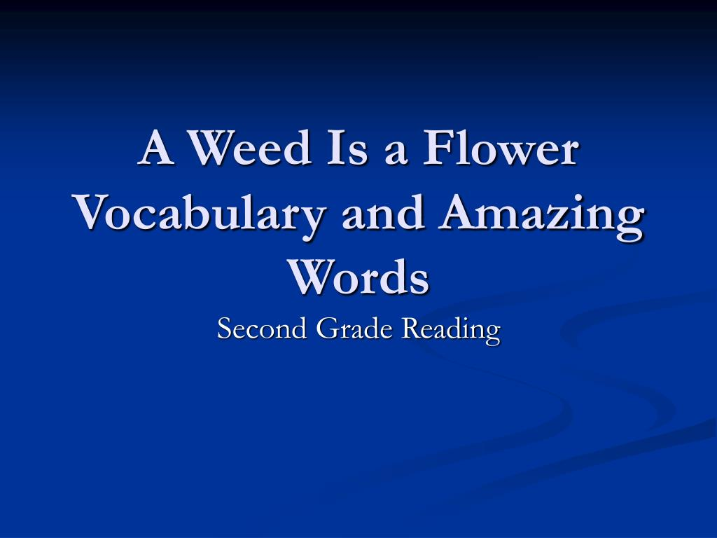 a weed is a flower vocabulary and amazing words l.