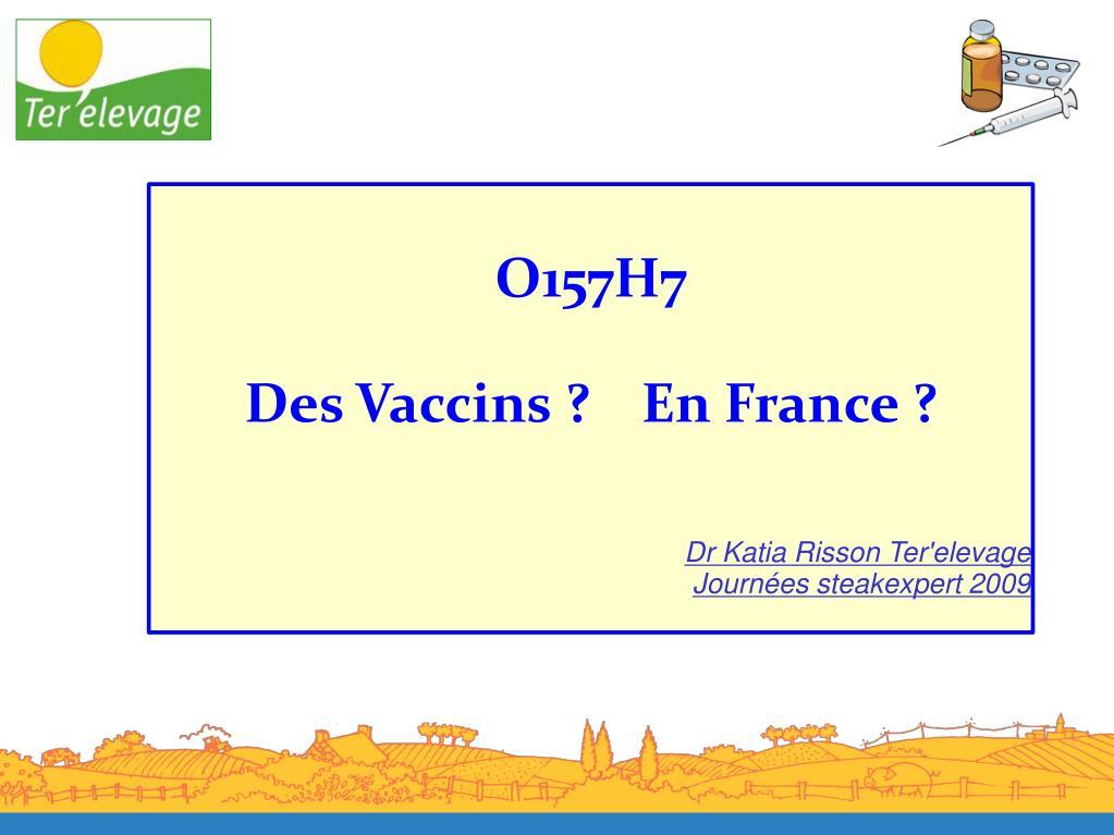 o157h7 des vaccins en france dr katia risson ter elevage journ es steakexpert 2009 l.
