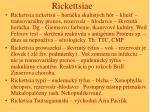 rickettsiae24