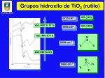 grupos hidroxilo de tio 2 rutilo