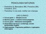 penicilinas naturais