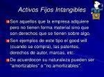 activos fijos intangibles