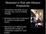 reduction in risk with efficient productivity