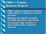 frm 1 triplet repeat region