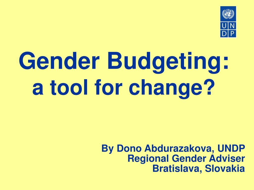 gender budgeting a tool for change l.