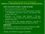 buone condizioni agronomiche ed ambientali norma 4 1 protezione del pascolo permanente 2