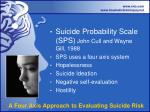 a four axis approach to evaluating suicide risk