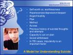 a model for understanding suicide