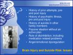 brain injury and suicide risk issues