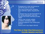 the role of high risk behaviors in suicide ideation and acts