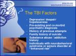 the tbi factors