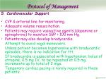 protocol of management14