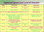 segmental spinal cord level function