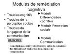 modules de rem diation cognitive