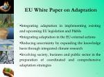 eu white paper on adaptation