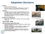 adaptation decisions