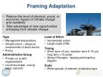framing adaptation