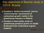 key objectives of biochar study at cdcs brooks22