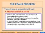 the fraud process13