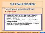 the fraud process14