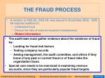 the fraud process24