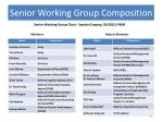 senior working group composition
