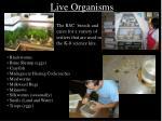 live organisms