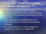 tribunal constitucional la uni n de hecho