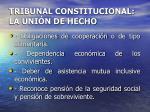 tribunal constitucional la uni n de hecho12