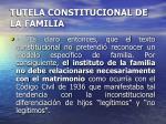 tutela constitucional de la familia7