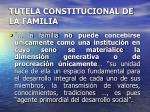 tutela constitucional de la familia8