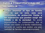 tutela constitucional de la familia9