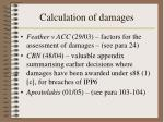 calculation of damages30