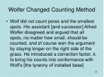 wolfer changed counting method