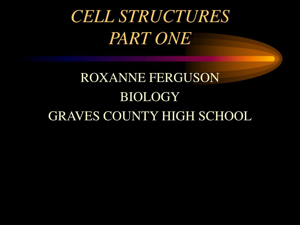 cell structures part one l.