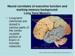 neural correlates of executive function and working memory background long term memory
