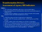 transformation drivers assessment of agency bh indicators6