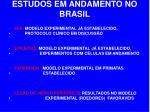 estudos em andamento no brasil
