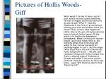pictures of hollis woods giff