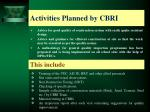 activities planned by cbri