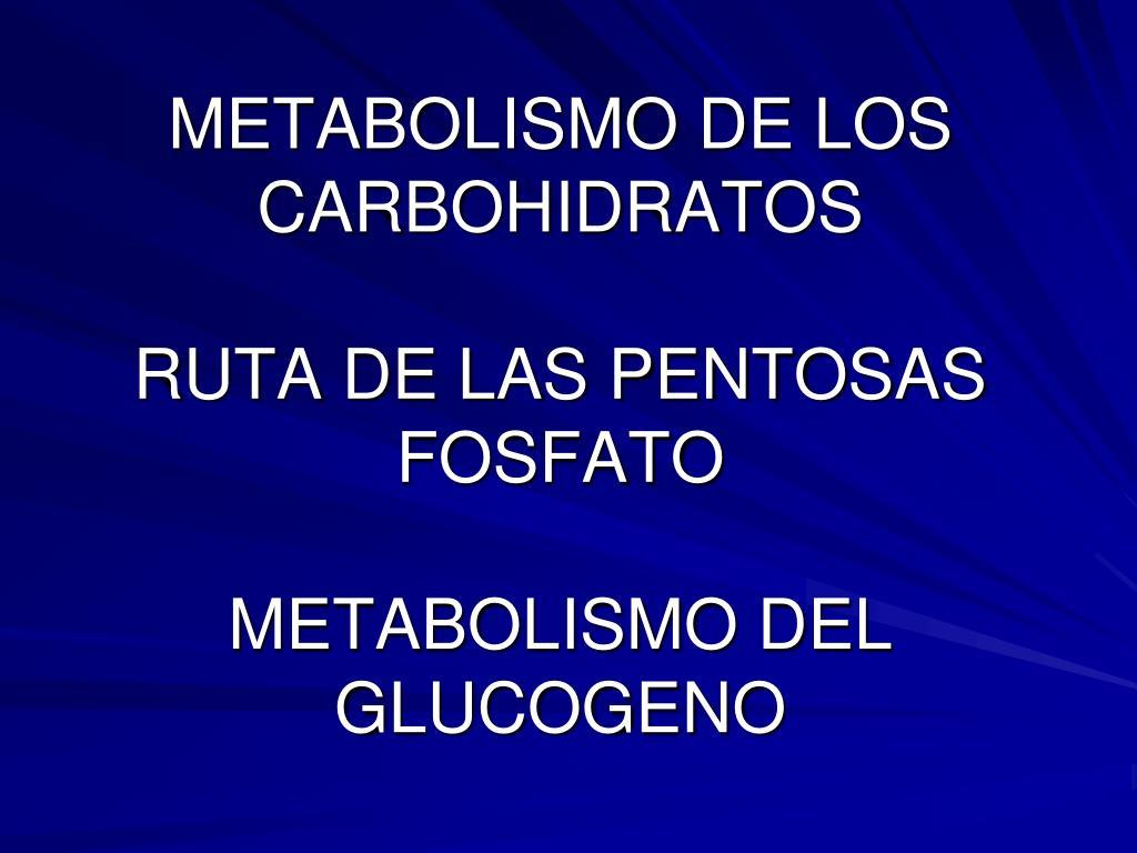 metabolismo de los carbohidratos ruta de las pentosas fosfato metabolismo del glucogeno l.