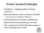 known issues challenges