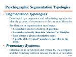 psychographic segmentation typologies