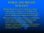 public and private nuisance