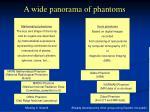 a wide panorama of phantoms